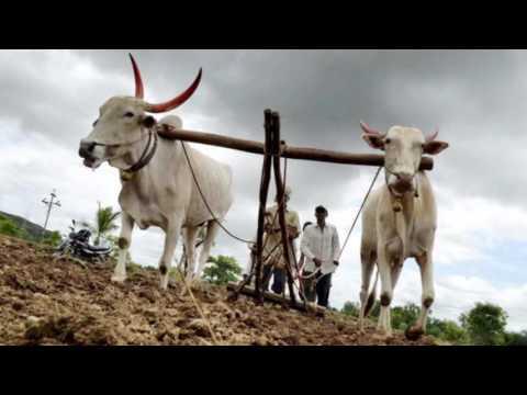 Shravan Geet  best marathi folk song 2016  marathi song