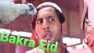 Bakra Eid Moments. Buner Vines