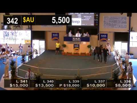 2014 Adelaide Yearling Sale Book 2 Day 3