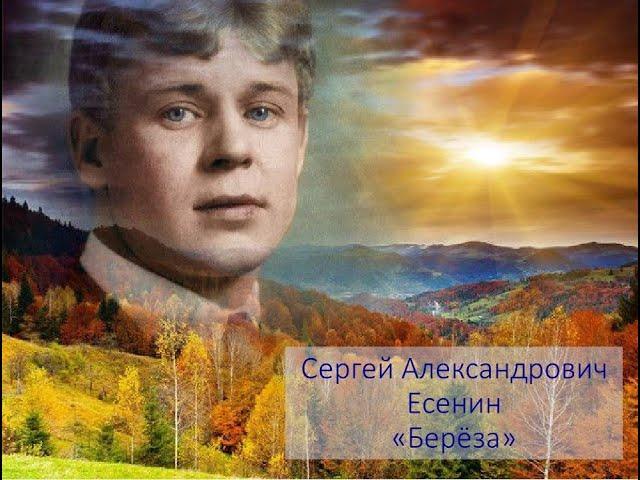 """Изображение предпросмотра прочтения – «группа_""""Гномики""""» читает произведение «Берёза» С.А.Есенина"""