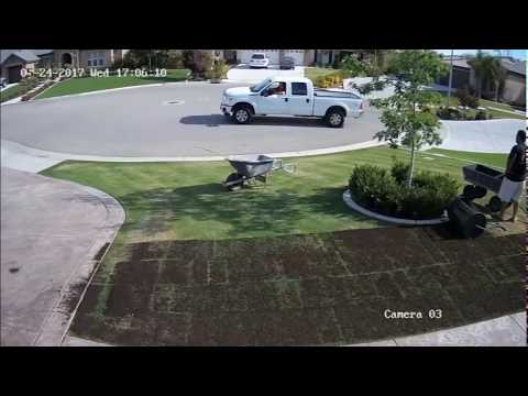 Organic Composted Manure on Lawn - Time Lapse - Central California - Amazing Results!