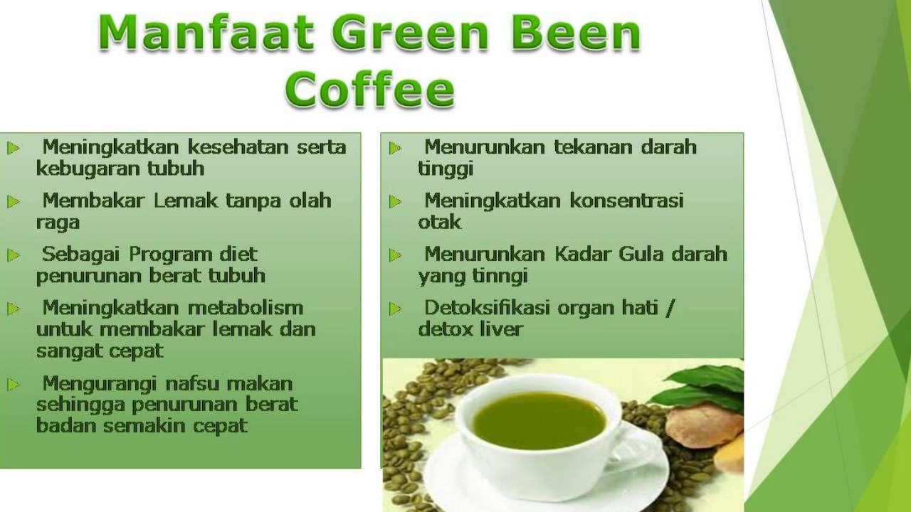 Mencari Kopi Hijau Untuk Diet? Ya Green Coffee Gamat