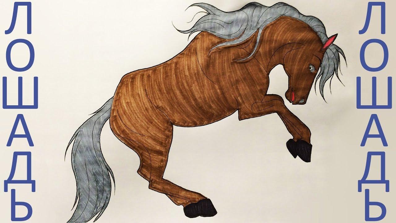 Как разрисовать лошадь. Уроки раскраски (Эмилия) Раскраска ...