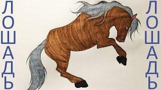 Как разрисовать лошадь. Уроки раскраски (Эмилия) Раскраска фломастерами. HD 1080. Антистресс