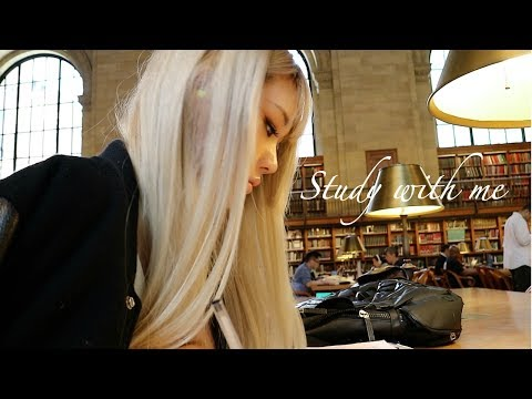 STUDY WITH ME AT THE NEW YORK PUBLIC LIBRARY | 뉴욕 공립 도서관에서 같
