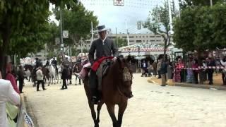 Concurso de Caballistas 2012.- Feria de Abril de Sevilla.