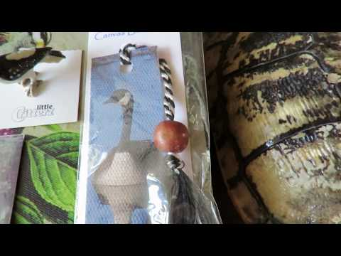 Turtle Shell, Canada Goose Bookmark & Pin & Hummingbird Snow Globe from Steve, Yasnesby & Kids Hilto