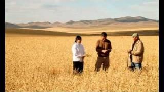 Б.Зангад-Алтан Намар Zangad.B-Golden Autumn 黄金の秋 Золотая осень