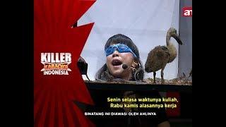 Lagi nyanyi-nyanyi manjyah, Natalie ketemu sama Bebek - Killer Karaoke Indonesia