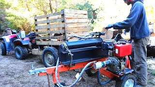 Cutting firewood for next winter
