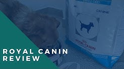 Royal Canin Hydrolyzed Protein Review: This Food Saved My Dog's Life