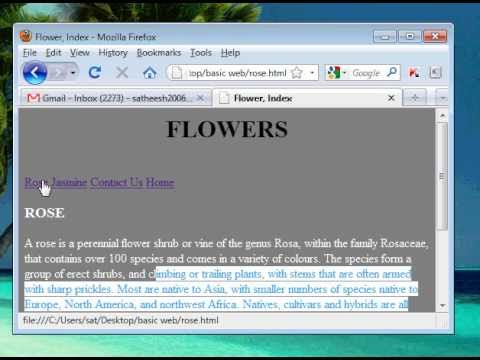 Basic Html Website Tutorials For Youtubers (06) - Inserting Images - Www.vdesignourweb.com