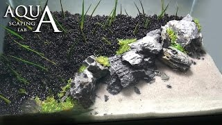 Aquascaping Lab - Tutorial Iwagumi Aquarium