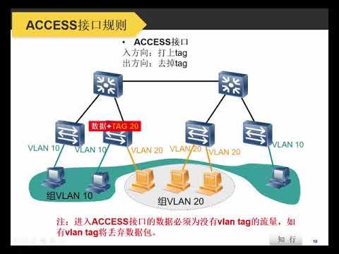 08 交換機的基礎 VLAN TRUNK原理和配置 - YouTube