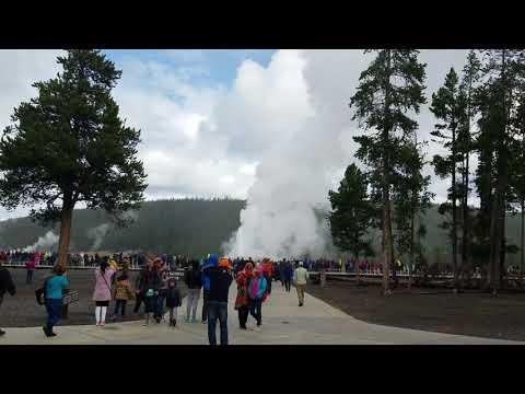 Old Faithful Geyser Erupting at Yellowstone National Park