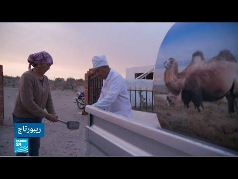 حليب النوق -ذهب الصحراء- في تكلامكان بآسيا الوسطى  - 14:55-2019 / 9 / 17