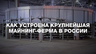 Как устроена крупнейшая майнинг-ферма в России