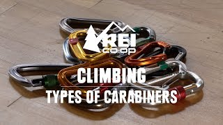 What Are the Different Types of Carabiners?    REI
