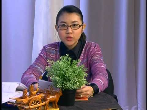 Cambodia Town Lowell TV Show 03 10 2015