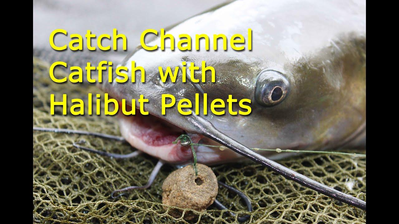 Halibut Pellets 6mm  fishingpelletscom