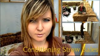 Straw Bale Gardening – Conditioning the Bale