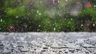 Yağışlı havalar qayıdır - PROQNOZ