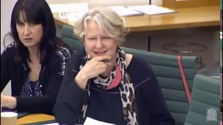 Helen Goodman MP Questioning Leave.EU founders at the Treasury Select Committee