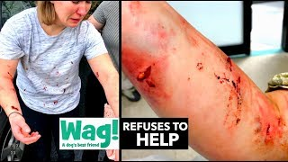 SHE WAS BRUTALLY ATTACKED BY A DOG WORKING FOR WAG! (Wag Refuses To Help)
