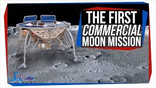 Israel Is Getting Ready for Their First Moon Landing! | SciShow News