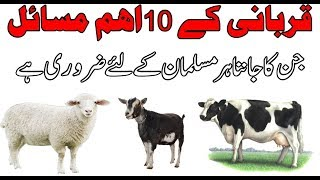 10 Important Issues to be Remembered by Every Muslim About Eid ul Azha
