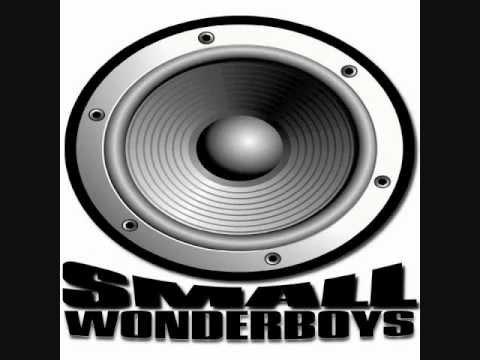 Small Wonder Boys