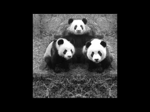 Panda Express (2016) [Full Album]