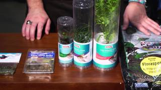 How to Plant a Nano Aquarium : Aquariums & Fish Care