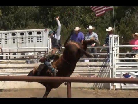 Ryder Bull Riding 2016