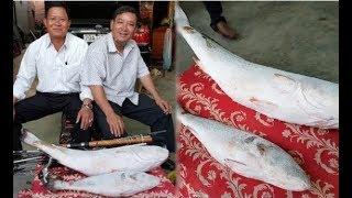 Người đàn ông Nha Trang bắt được 2 con cá lạ, được trả giá tới 1,5 tỉ đồng