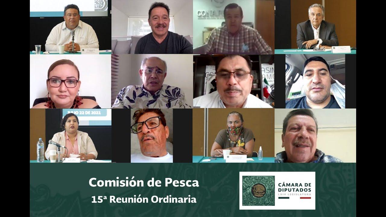 TRANSMISIÓN DIFERIDA / Reunión de la Comisión de Pesca.