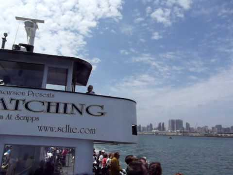 San Diego Harbor Cruise at Coronado Bridge