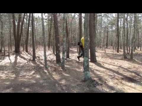 Yarmouth Woodlands Prescribed Burn