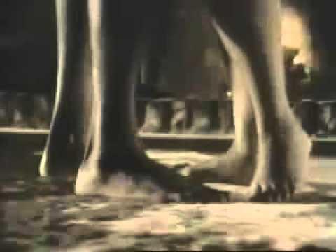 Vesta Sweet Sweet Love 1988 - YouTube