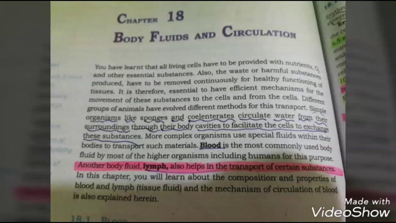 circulation of body fluids