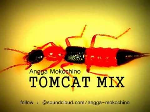 DJ ANGGA MOKOCHINO - TOMCAT MIX