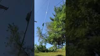 Chopping tree branches by helicopter  attached rotary cutter