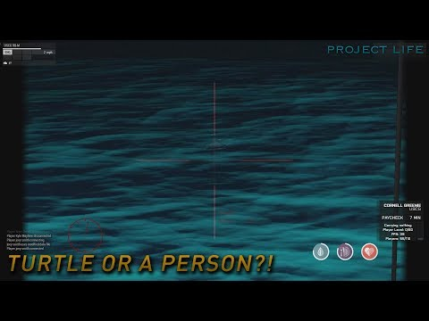 Arma 3 Project Life: Coast Guard Series - Episode #12: Turtle or a Person?!