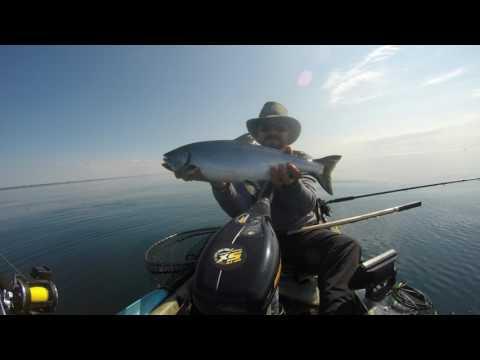 Kayak Fishing Lake Ontario For Salmon