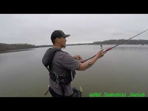 Aquia Creek Northern Snakehead Fishing