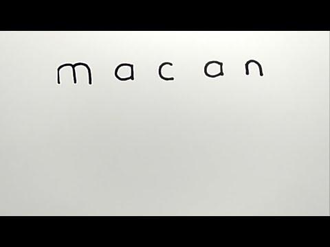 WOW, cara menggambar MACAN dari kata macan