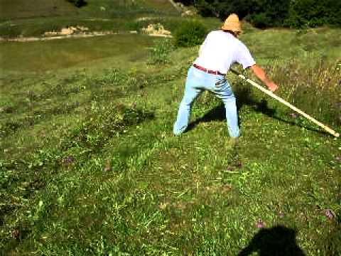 muzica de iarbă din varicoză băi de sodiu împotriva varicozei