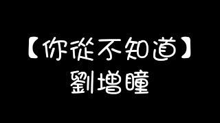 劉增瞳/你從不知道【歌詞版】