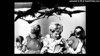 Pantha du Prince - Welt Am Draht (Die Vogel Version)