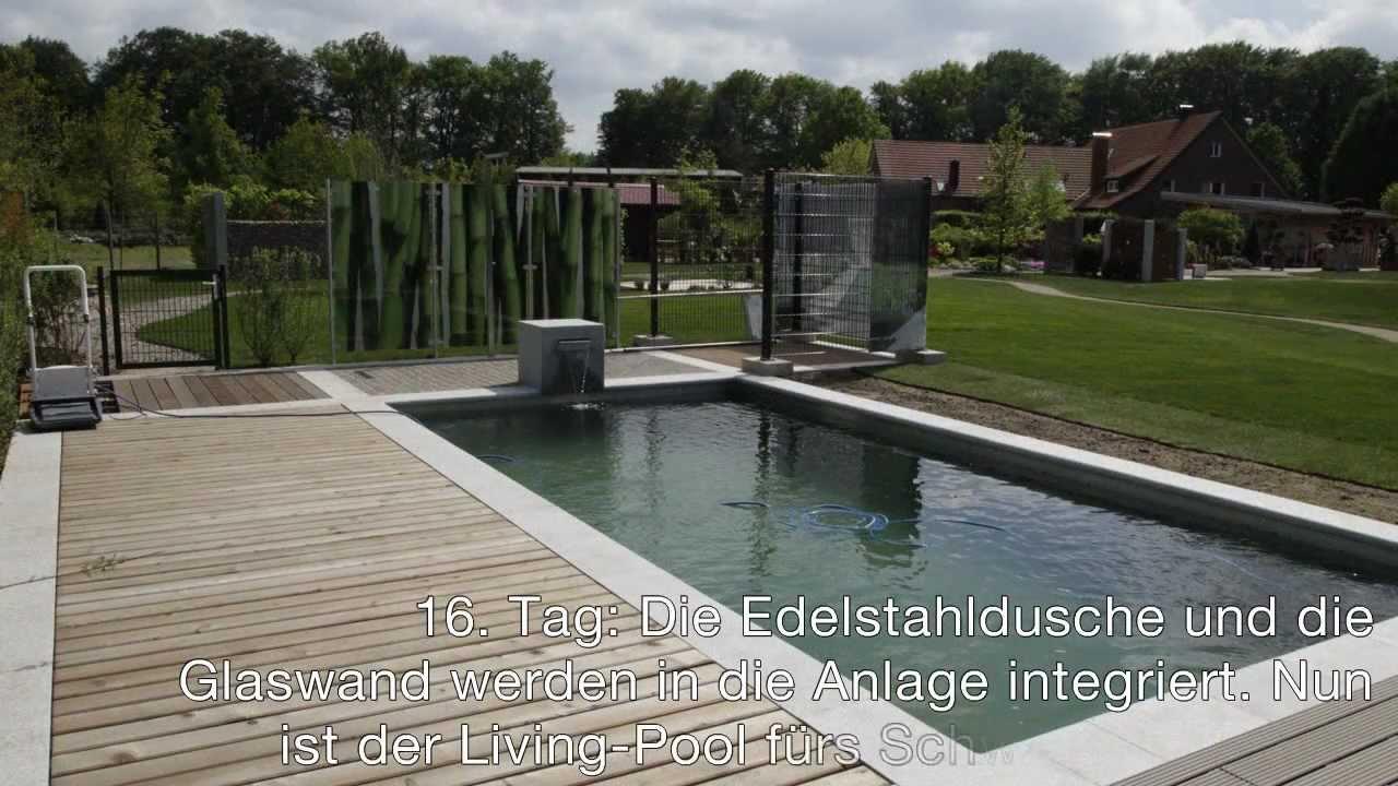 Natürlich Baden - Living Pool - Lütkemeyer Ihr Gärtner Von Eden ... Pool Mit Glaswand Garten
